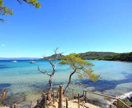 islands-of-Porquerolles