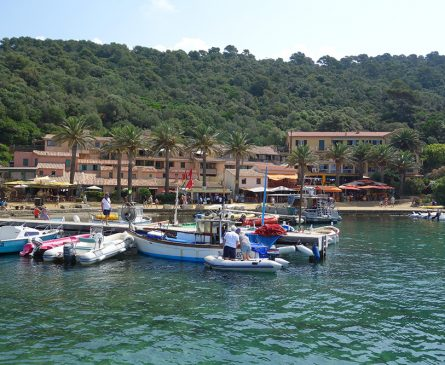 The island of Port-Cros